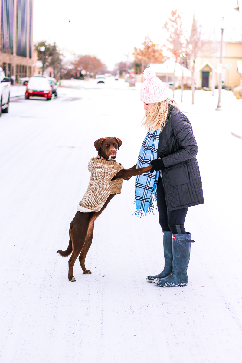 Snow Day   AMS Blog