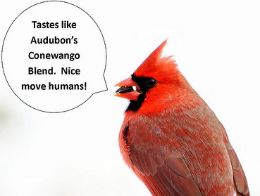 Monday, October 3, is Audubon Birdseed Order Deadline