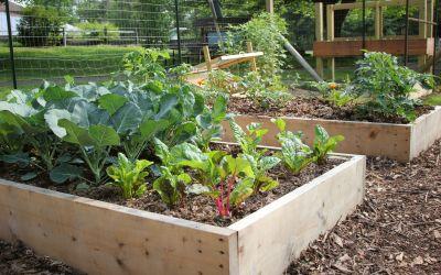 I Love Gardens by Jennifer Schlick