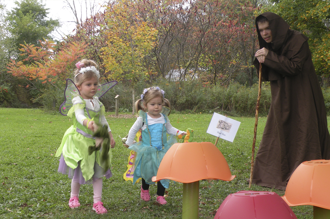 Fairy Fest 2