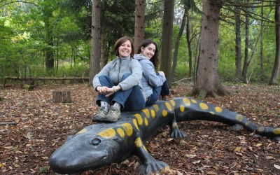 Audubon Home to Giant Spotted Salamander