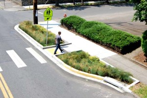 Bioswale with crosswalk