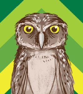 Mural of a Burrowing Owl with varying colors of green and yellow stripes in back round