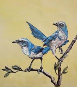 Mural of two Blue Scrub Jays perched on a pranch