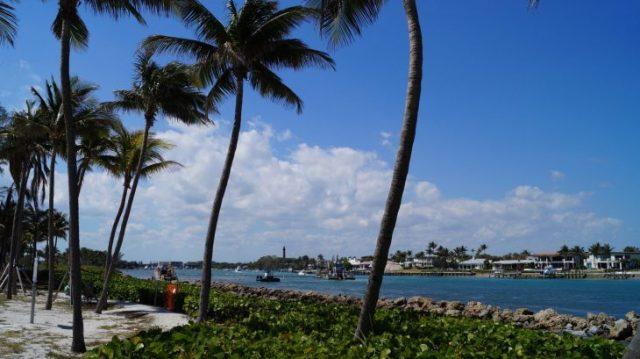 SIM Karte im Ausland - günstig telefonieren in Florida