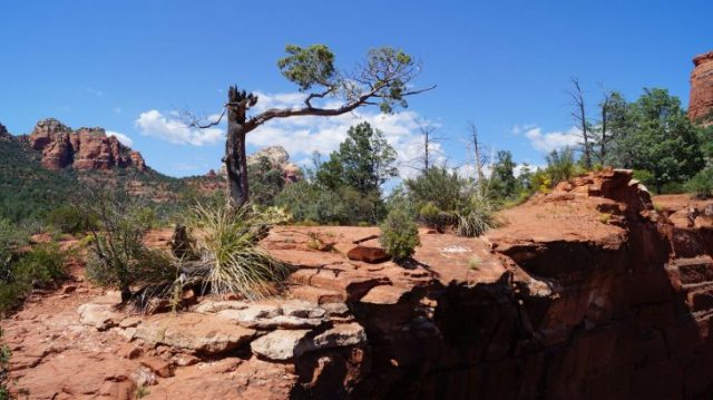 Wandern in Sedona Arizona