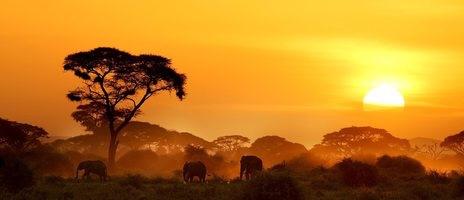 Sonnenuntergang in Kenia