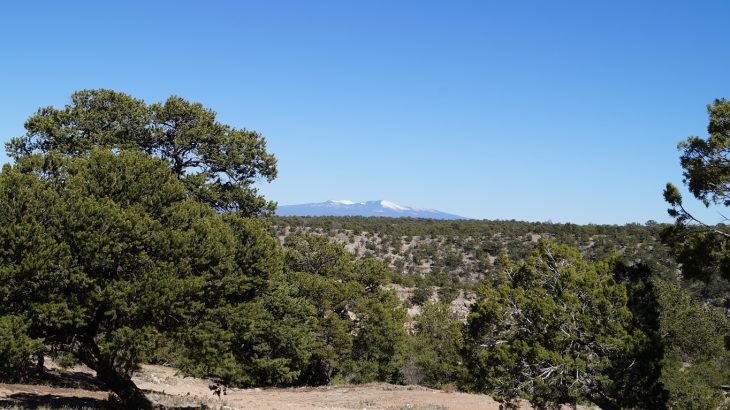 Der Mt. Taylor in New Mexico