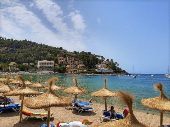 Mit Condor Eintagsfliegen nach Mallorca