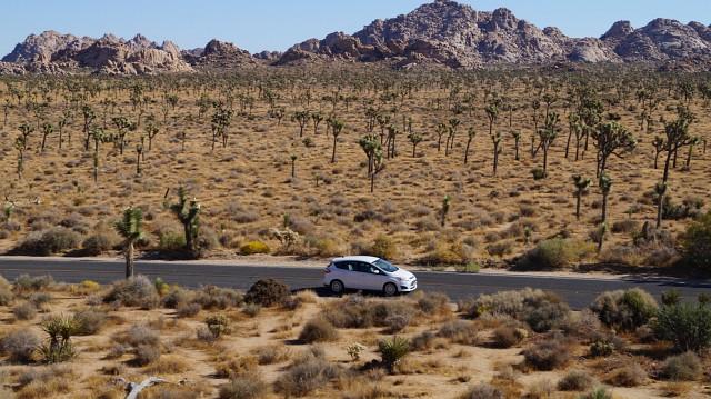 Mietwagenversicherungen bringen eine entspannte Fahrt durch den Joshua Tree Nationalpark