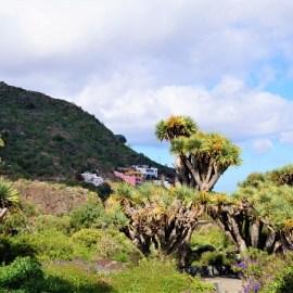 Mit der Allianz Notfallkarte nach Gran Canaria