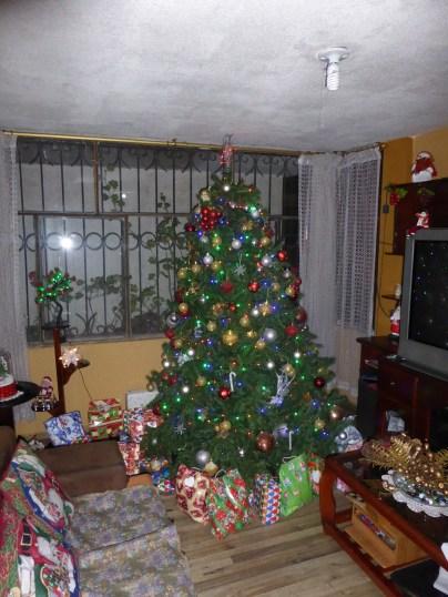 die Geschenke unter dem Baum