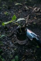 02-3 Zero Waste Gardening-13