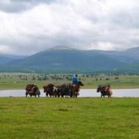 Trek dans la boue du parc national de Naiman nuur