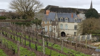 Angers Chateau (2)