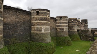 Angers Chateau (8)