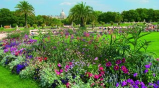 luxembourg-jardin-fleurs