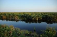 Donau Delta