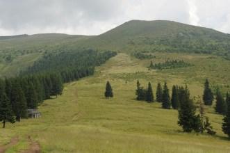 Cindrel Mountain