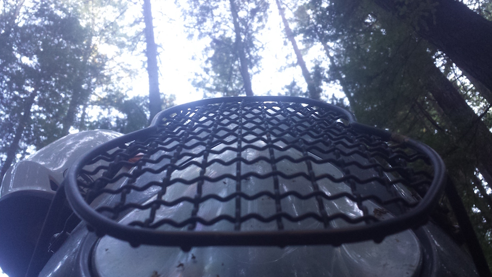 my headlight grill in the redwoods