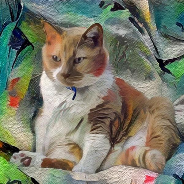 AugiDog Cat Custom Pet Canvas