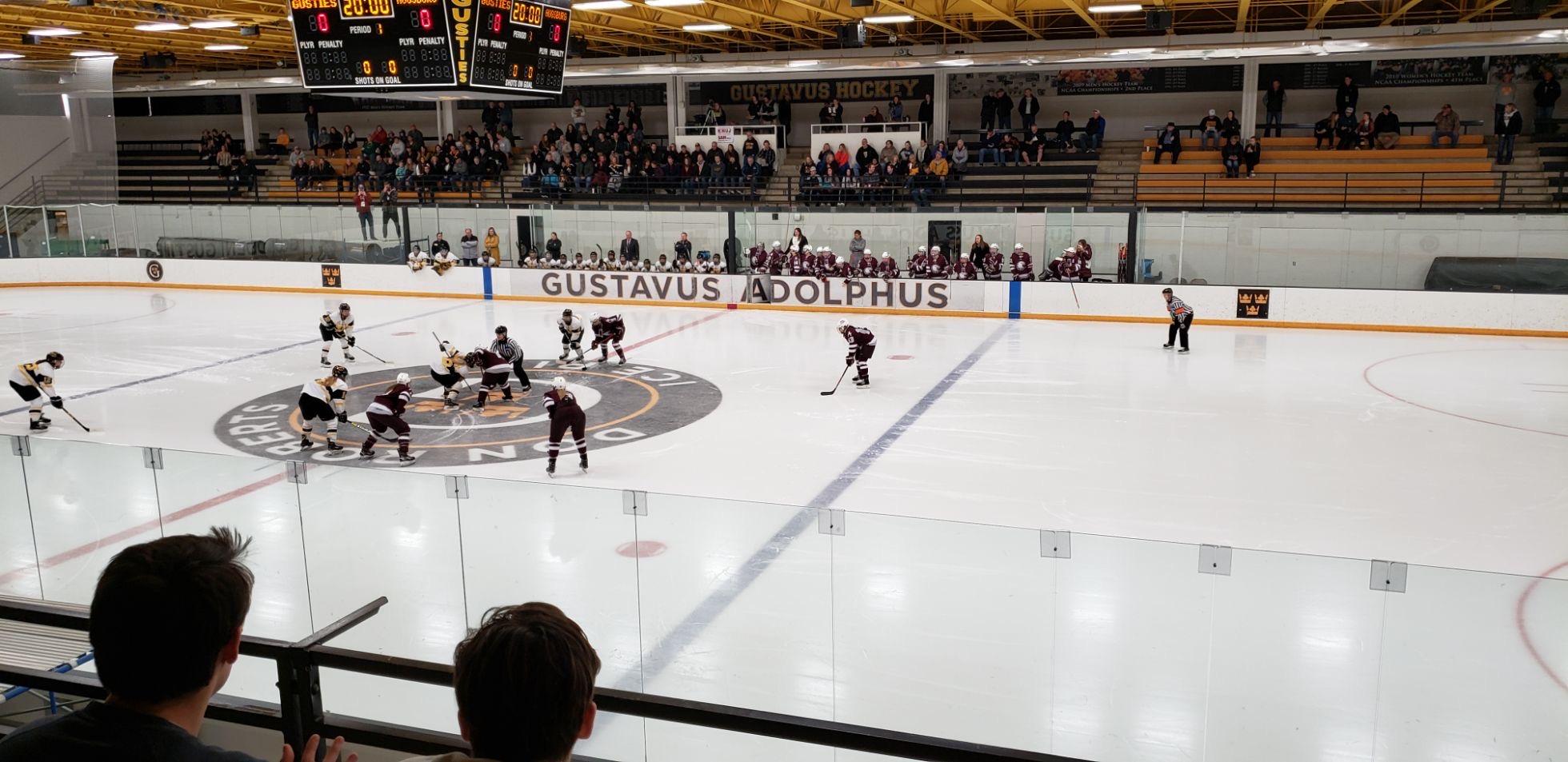 Women's Hockey Loses in MIAC Championship