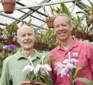 Chadwick and Son Orchids