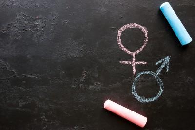 transgender school policy