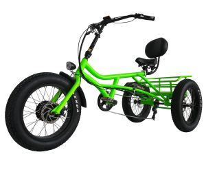750W Electric Trike 20 Inch Fat Tires