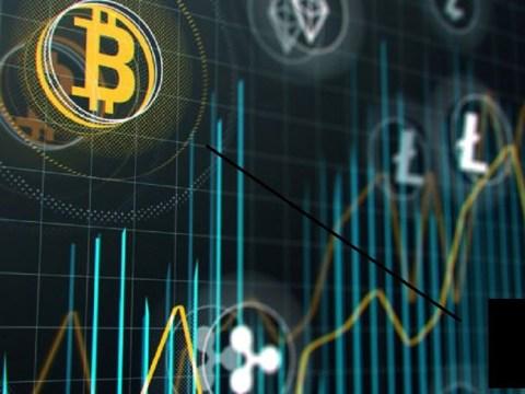 bitcoin perde espaço para grin