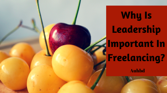 Why Is Leadership Important In Freelancing?