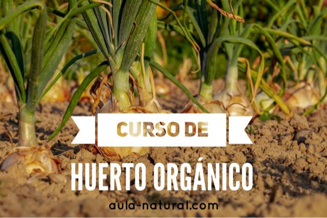 Curso de huerto orgánico