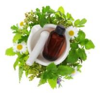 Aprende a elaborar y usar los extractos vegetales