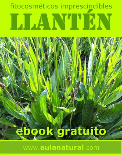 ebook fitocosmética gratis: LLANTÉN