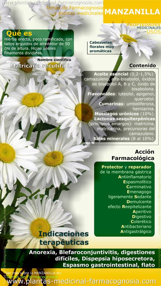 Propiedades y beneficios de la manzanilla. Infografía