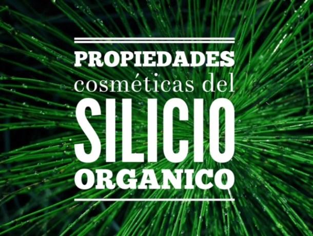 Propiedades cosméticas del silicio orgánico