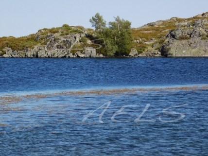 Orillas escarpadas al oeste de la laguna donde se refugian los abedules