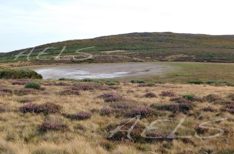 Laguna totalmente seca en agosto