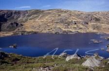 Laguna de Lacillo. julio de 1993