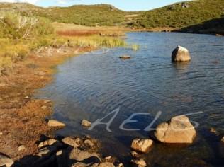 Orillas de la turbera de La Clara con un fuerte estiaje en septiembre.