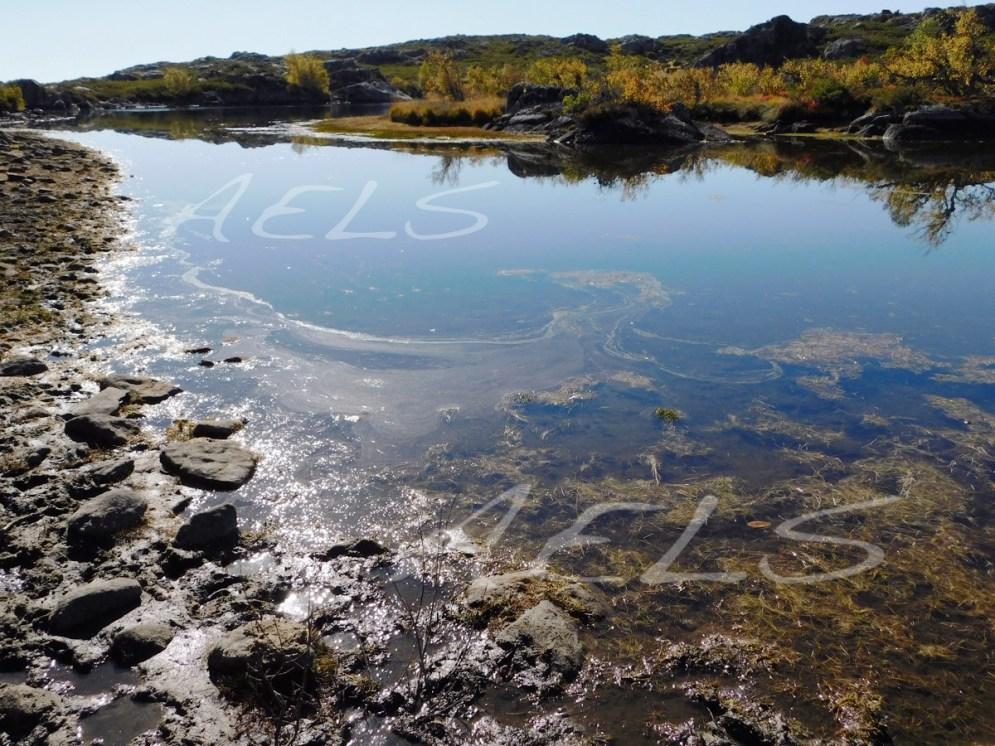 Ensenada noroeste de la laguna del Cuadro. 5 de octubre de 2017.