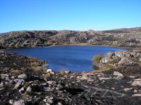 26 de octubre de 2005. Panorámica de las orillas de la laguna de la Roya tras el incendio.