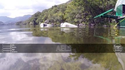 El ROV es operado desde una barca en superficie por los técnicos de ECOHYDROS S.L.