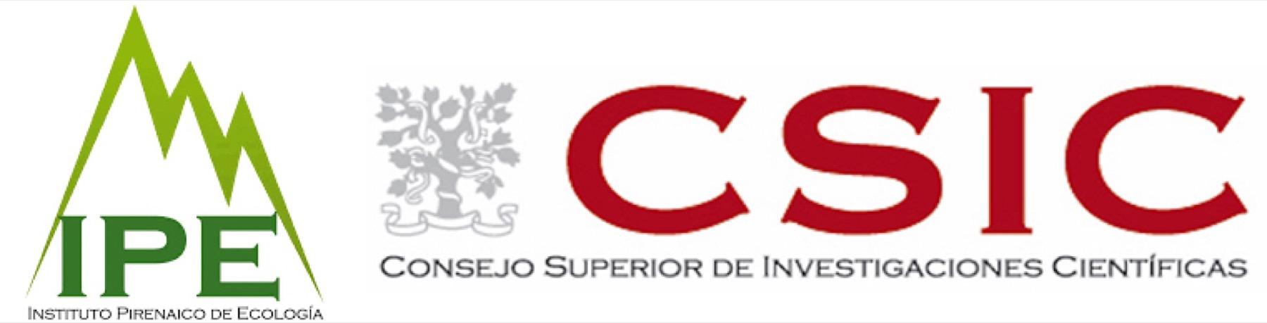IPE-CSIC logo hor