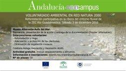 reforestacion-03-12-2016
