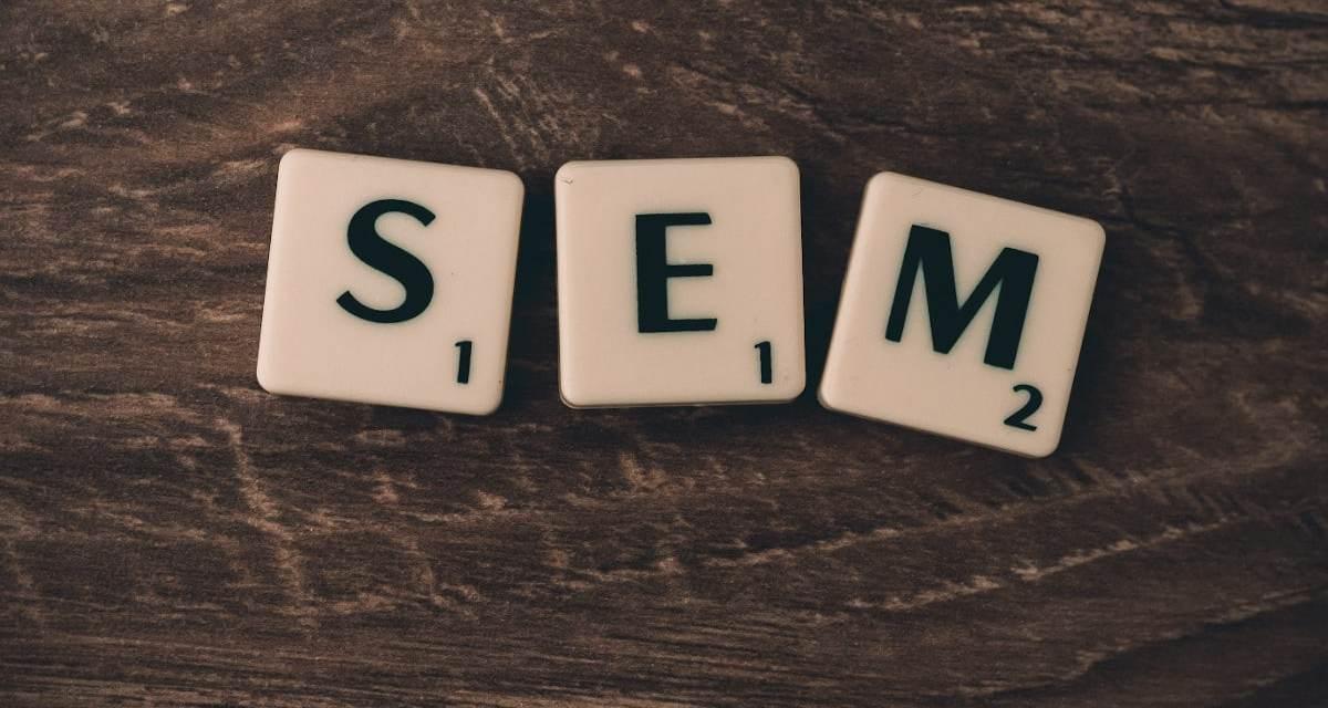 Por qué necesitas una agencia SEM