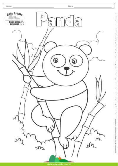 Desenhos para Colorir  Panda  Aula Pronta