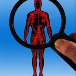 Cómo mejorar el flujo sanguíneo en el pene