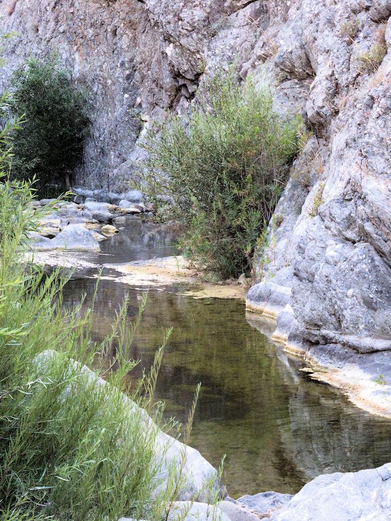 Piru Creek (39)