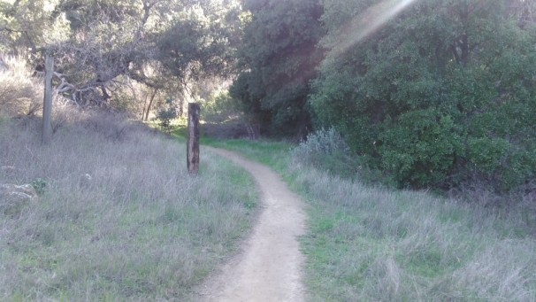 This is the main trail.